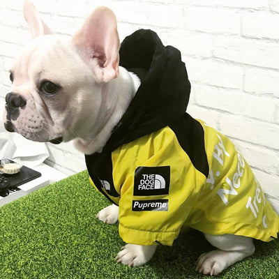 Designer Ski Jacket For Dogs