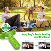 Dog toothbrush Pet Chew Toy