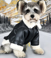 Real Leather Shearling For Dogs