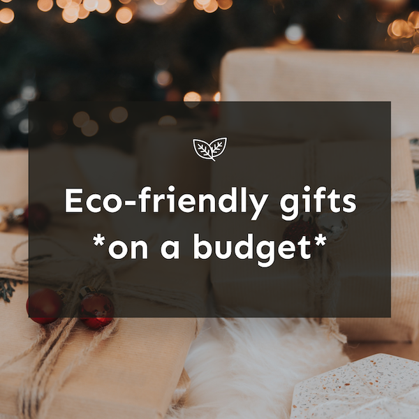 sustainable gifts on a budget