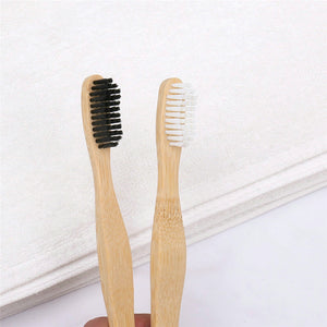 Sustainable toothbrushes