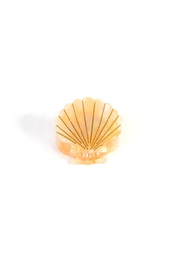 Mini Seashell Hair Jaw 2PCS Set