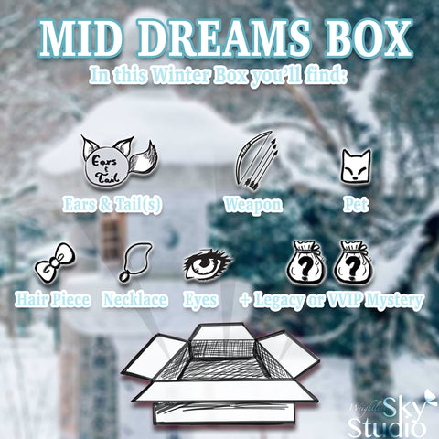Hidden Dreams Winter: Mid Dream Box