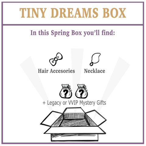 Hidden Dreams: Tiny Dreams Box