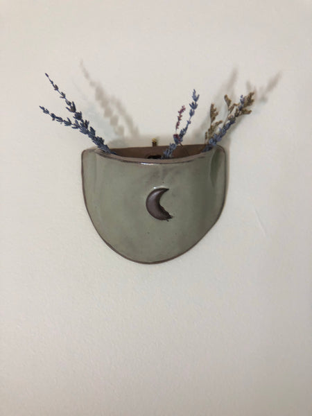 Crescent Moon Wall Planter