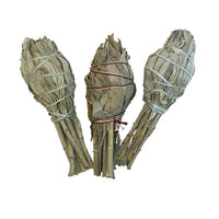 White Sage - SMALL SAGE BUNDLE (California)