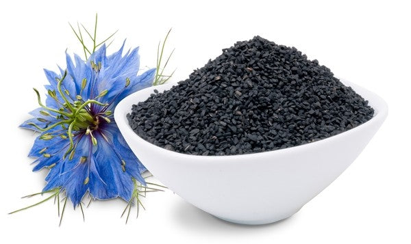 Virgin Organic Black Cumin Oil, also known as black seed oil, is cold-pressed extracted from the seeds of the Nigella sativa plant. Our BLACK CUMIN SEED OIL is cold-pressed, unrefined, and non-deodorized (NO CHEMICAL PROCESS). Miami, Lauderdale, Palm Beach, So Florida. Online