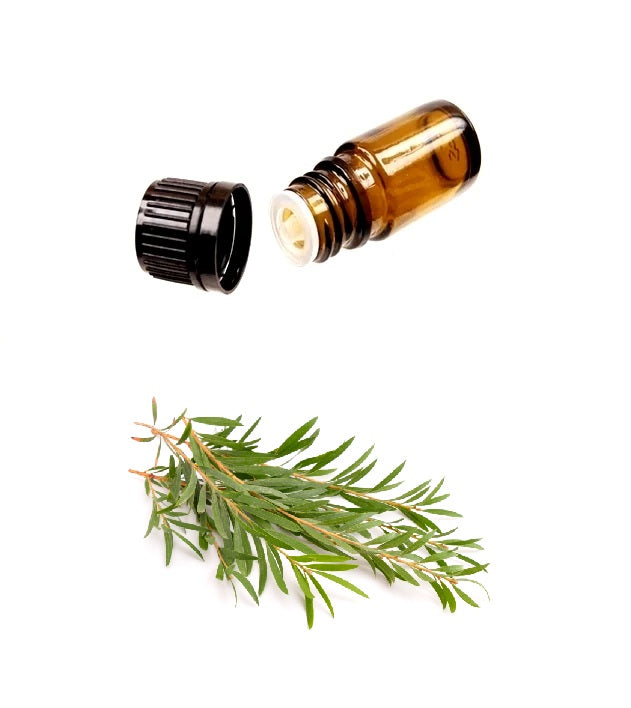 Buy Pure TEA TREE Essential Oil (Therapeutic Treatment) MY Natural Beauty essential oils are 100% pure and natural - Australian tea tree oil offers a wide-range of topical applications for body and hair, including dandruff, toe nail fungus, and inflamed acne.