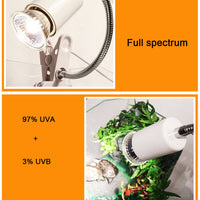 25/50/75W UVA+UVB 3.0 Reptile Lamp Bulb Turtle Basking UV Light Bulbs Heating Lamp Amphibians Lizards Temperature Controller - The most popular products on Tiktok | GOWOW