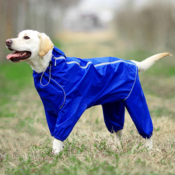 Pet Dog Raincoat Reflective Waterproof Clothes High Neck Hooded Jumpsuit For Small Big Dogs Rain Cloak Golden Retriever Labrador - The most popular products on Tiktok | GOWOW