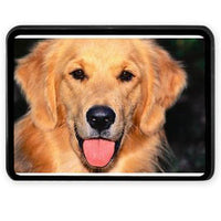 Custom Dog Breed Custom Trailer Hitch Cover to Personalized Your Ride