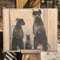 Engraved Photo In Leather Pet Photograph for Animal Lovers Gift Engraved | Enchanted Memories, Custom Engraving & Unique Gifts