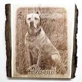 Engraved Dog Memorial Photo Gift to celebrate the love and life of your best friend, Etched Picture of pet