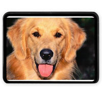 Personalized Photo Trailer Hitch Cover - Enchanted Memories, Custom Engraving & Unique Gifts
