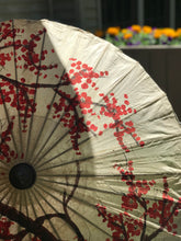Load image into Gallery viewer, Hand Painted Thai Paper Parasol