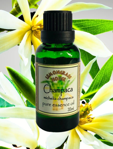 Champaca Pure Essential Oil