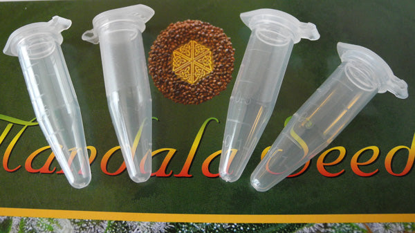 buy cannabis seed tubes and vials