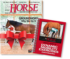 The Horse Gift Subscription