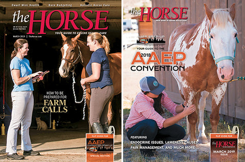 The Horse Subscription with March 2019 Issue PDF Download