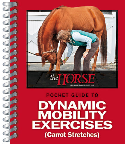 The Horse's Pocket Guide To Dynamic Mobility Exercises (Carrot Stretches)