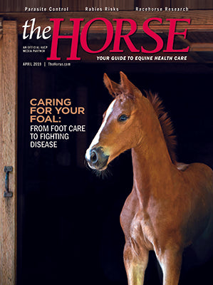 The Horse Subscription with April 2019 Issue PDF Download