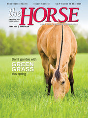The Horse - April 2021 Issue