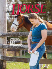 The Horse - June 2020 Issue