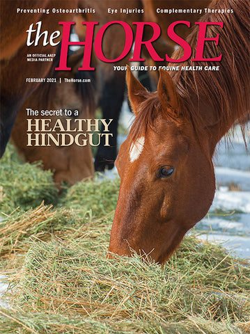 The Horse Subscription with February 2021 Issue PDF Download