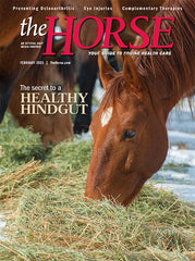 The Horse - February 2021 Issue
