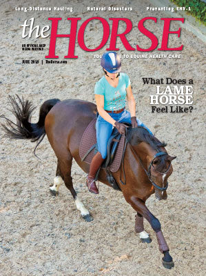 The Horse Subscription with June 2018 Issue PDF Download