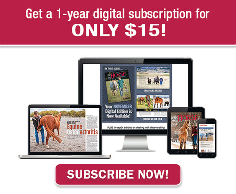 Get a one-year digital subscription for ONLY $15!