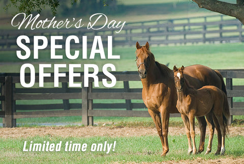 Mother's Day Subscription Special - Save up to 80%!