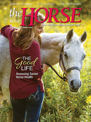 The Horse - October 2020 Issue