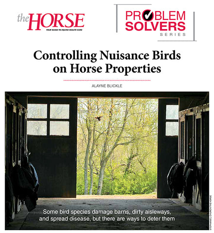 Problem Solver Series: How to Control Nuisance Birds on Horse Properties