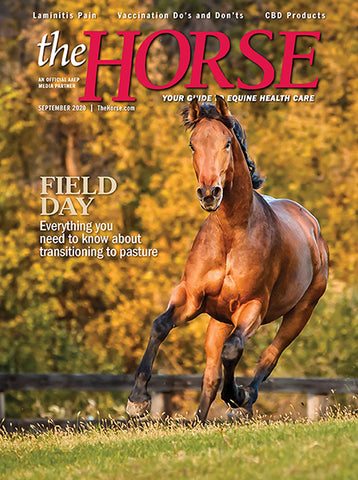 The Horse Subscription with September 2020 Issue PDF Download