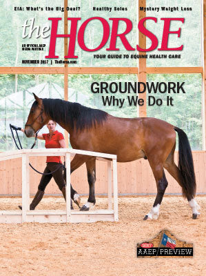 The Horse - November 2017 Issue