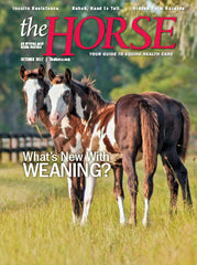 The Horse - October 2017 Issue