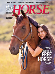 The Horse - September 2017 Issue