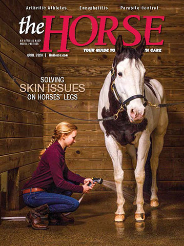 The Horse - April 2020 Issue