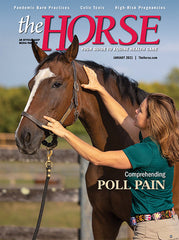 The Horse - January 2021 Issue