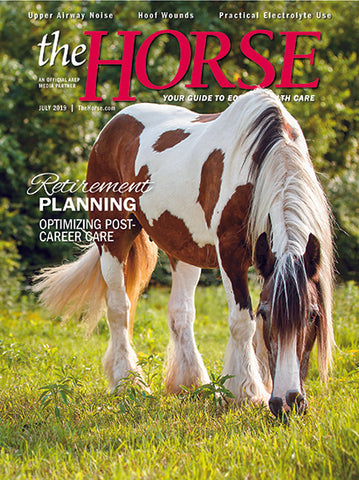 The Horse - July 2019 Issue