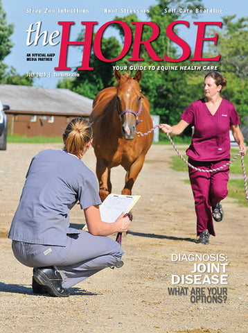The Horse - July 2020 Issue