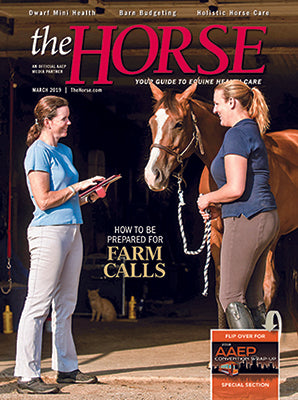 The Horse - March 2019 Issue and 2018 AAEP Convention Wrap-Up
