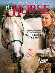 The Horse - March 2020 Issue