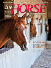 The Horse - May 2019 Issue