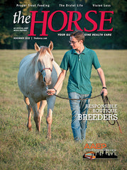 The Horse - November 2018 Issue