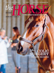 The Horse - October 2018 Issue