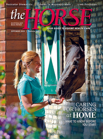 The Horse Subscription with September 2019 Issue PDF Download