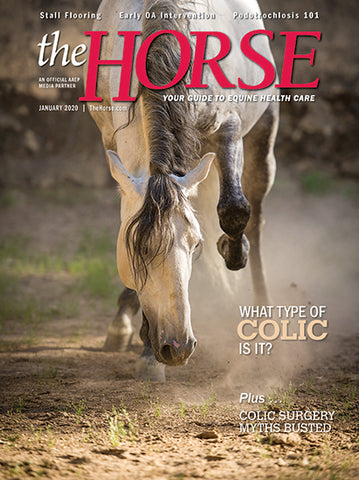 The Horse Subscription with January 2020 Issue PDF Download