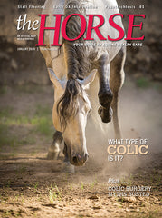 The Horse - January 2020 Issue